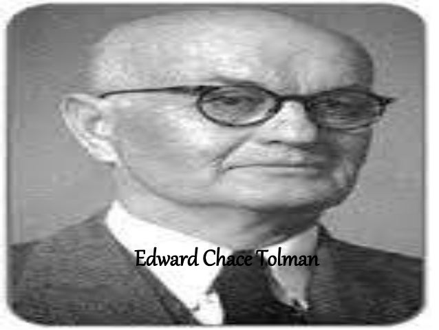 tolman theory of learning pdf
